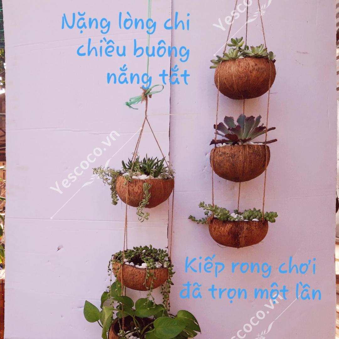 chau-gao-dua-treo-3-tang-l77sazmn.jpg